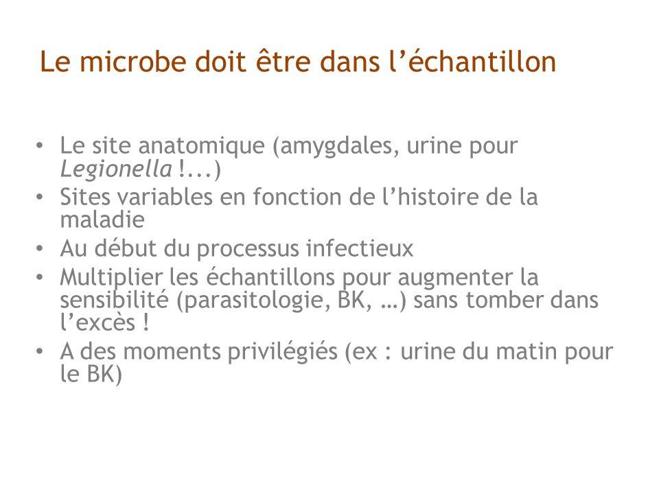 Le microbe doit être dans l'échantillon