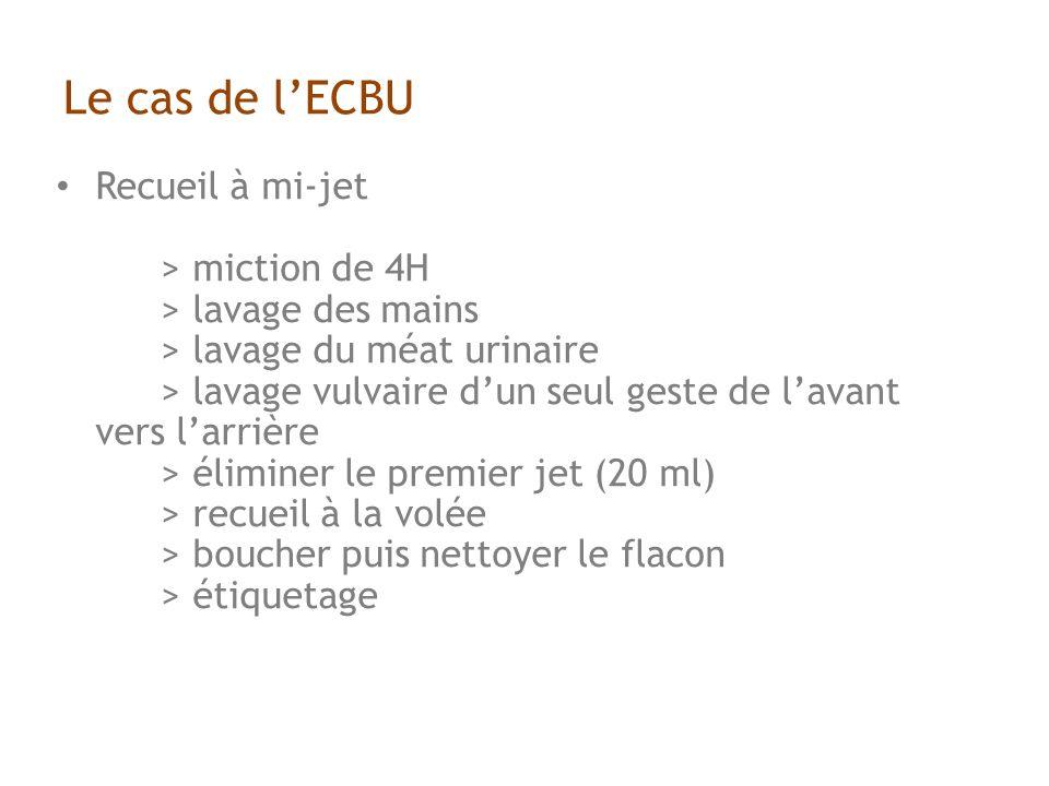 Le cas de l'ECBU