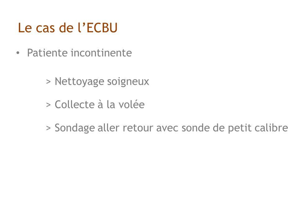 Le cas de l'ECBU Patiente incontinente