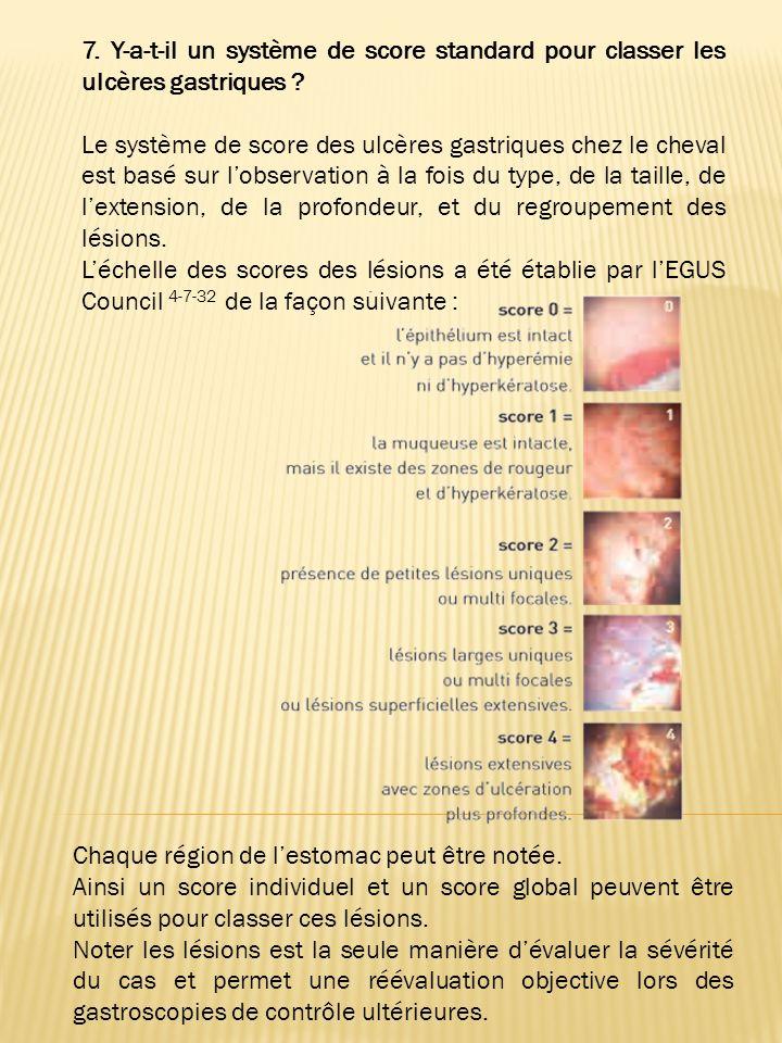 7. Y-a-t-il un système de score standard pour classer les ulcères gastriques