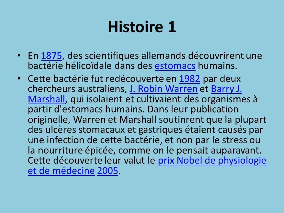Histoire 1 En 1875, des scientifiques allemands découvrirent une bactérie hélicoïdale dans des estomacs humains.