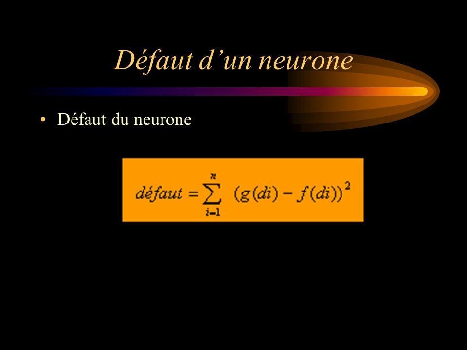 Défaut d'un neurone Défaut du neurone