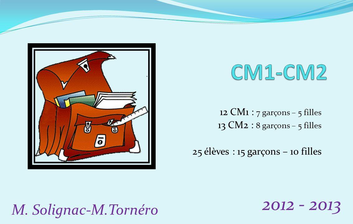 CM1-CM2 2012 - 2013 M. Solignac-M.Tornéro