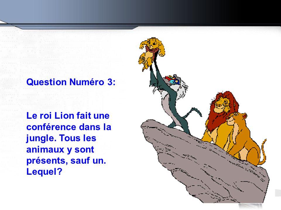 Question Numéro 3: Le roi Lion fait une conférence dans la jungle.