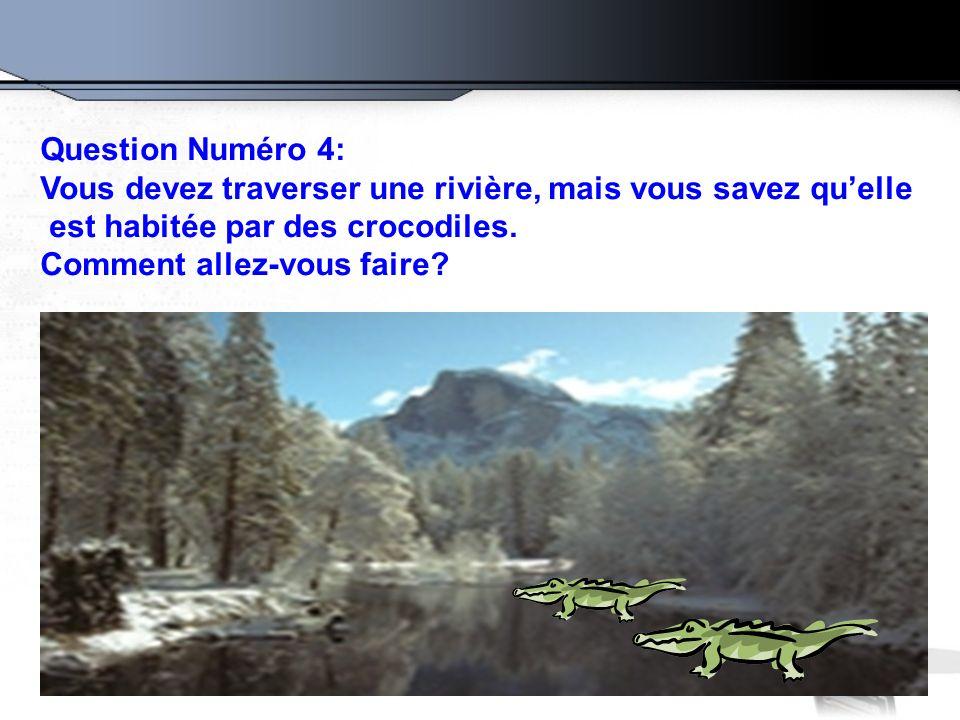 Question Numéro 4: Vous devez traverser une rivière, mais vous savez qu'elle. est habitée par des crocodiles.