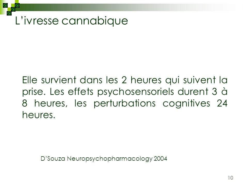 L'ivresse cannabique