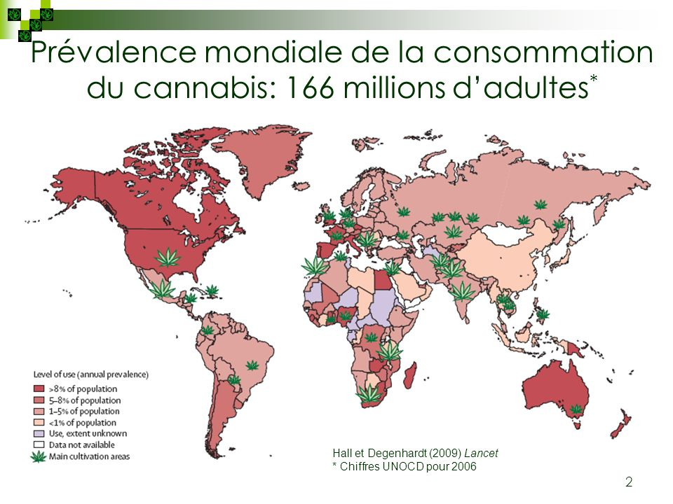 Prévalence mondiale de la consommation du cannabis: 166 millions d'adultes*
