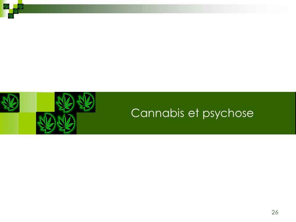 Cannabis: plante & substance