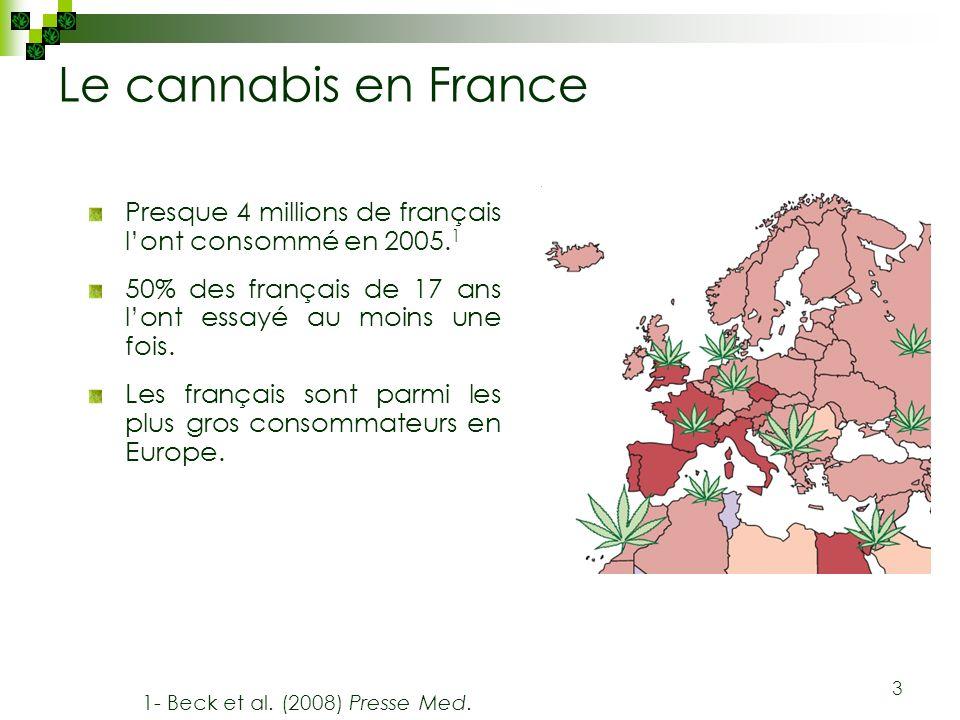 Le cannabis en France Presque 4 millions de français l'ont consommé en 2005.1. 50% des français de 17 ans l'ont essayé au moins une fois.