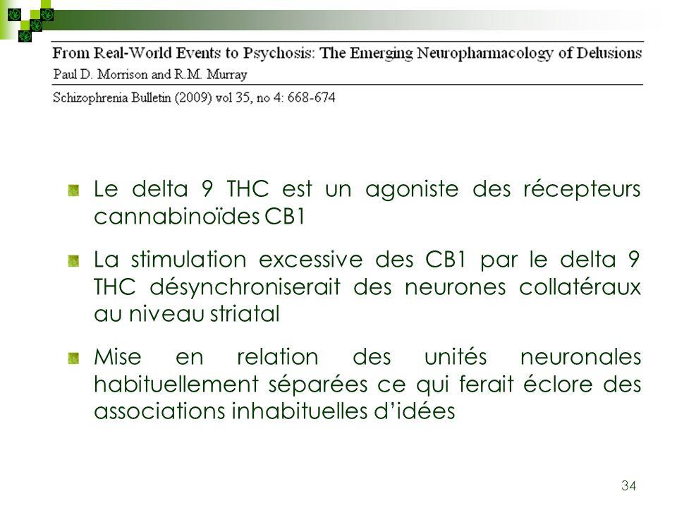 Le delta 9 THC est un agoniste des récepteurs cannabinoïdes CB1