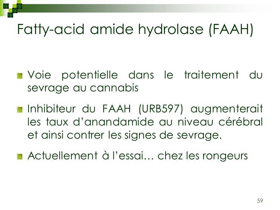 Fatty-acid amide hydrolase (FAAH)