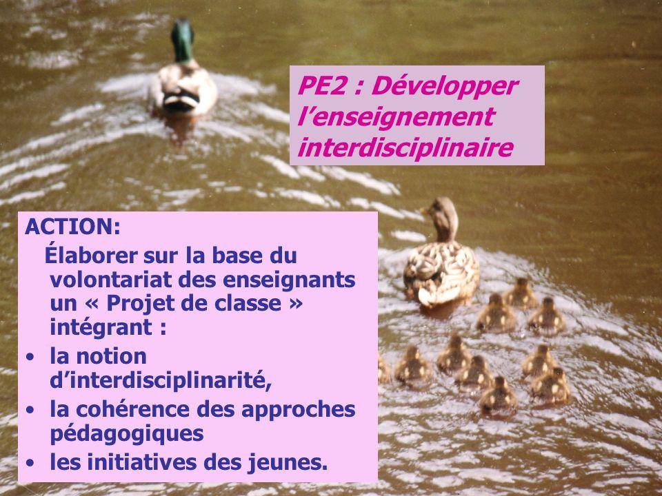 PE2 : Développer l'enseignement interdisciplinaire