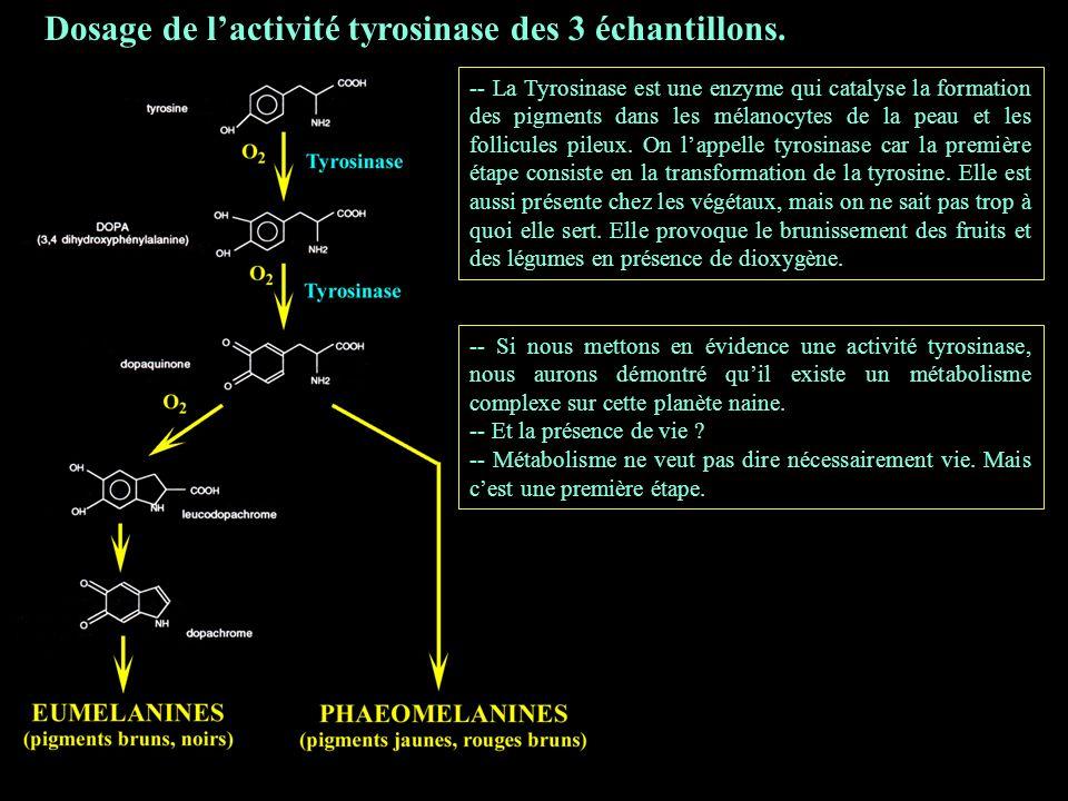 3 Dosage de l'activité tyrosinase des 3 échantillons.