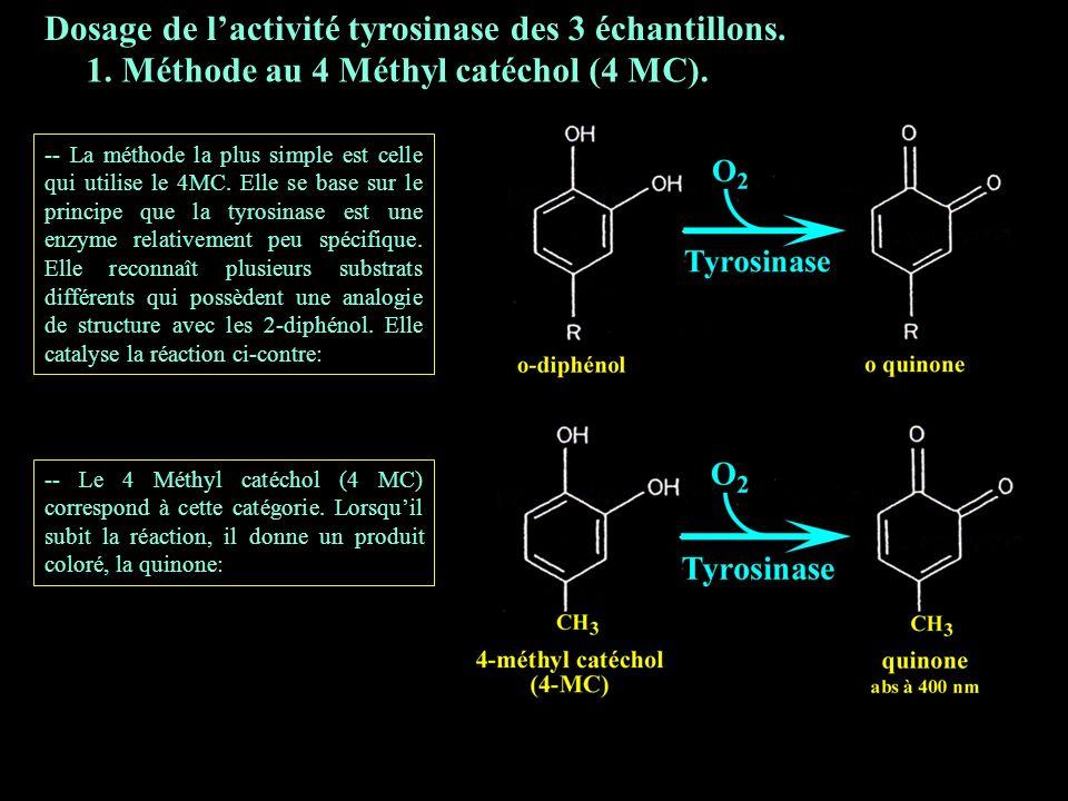 3.1 4 MC Dosage de l'activité tyrosinase des 3 échantillons.