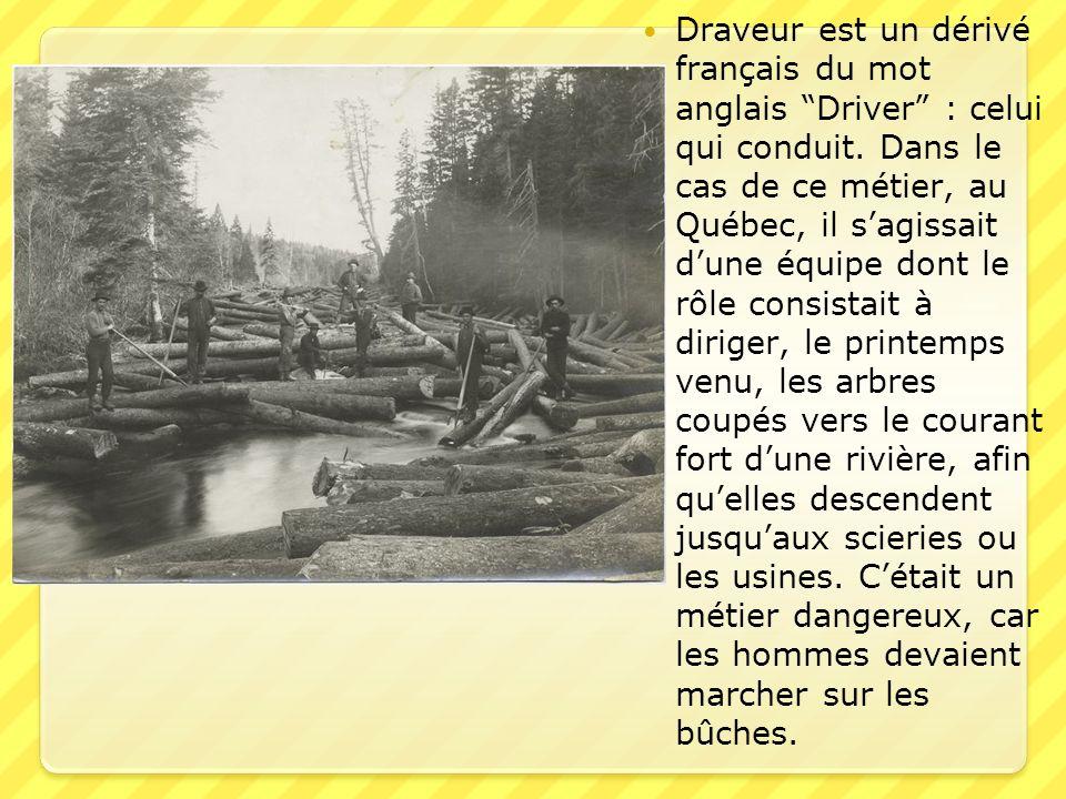 Draveur est un dérivé français du mot anglais Driver : celui qui conduit.