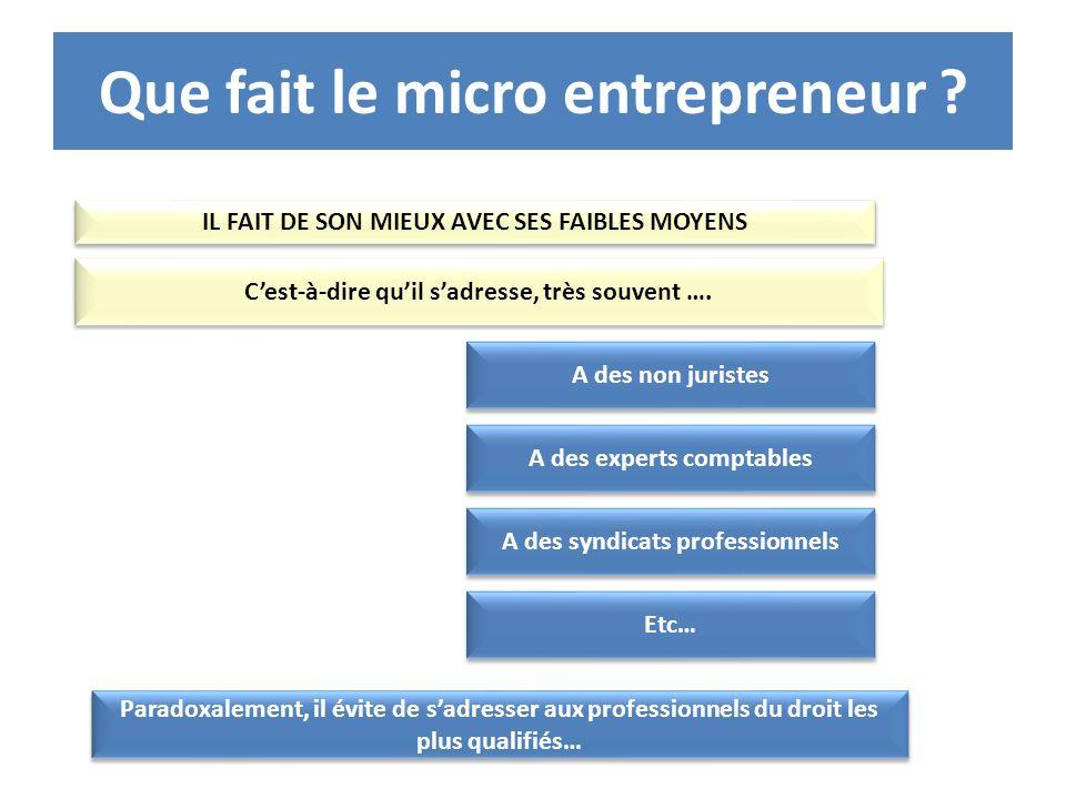 Que fait le micro entrepreneur