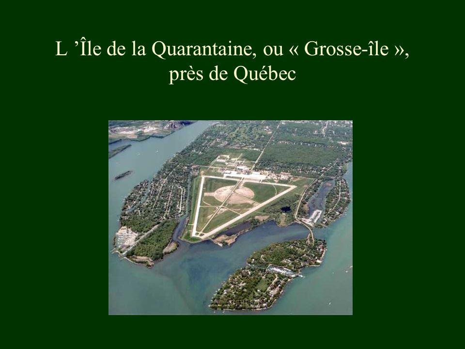 L 'Île de la Quarantaine, ou « Grosse-île », près de Québec