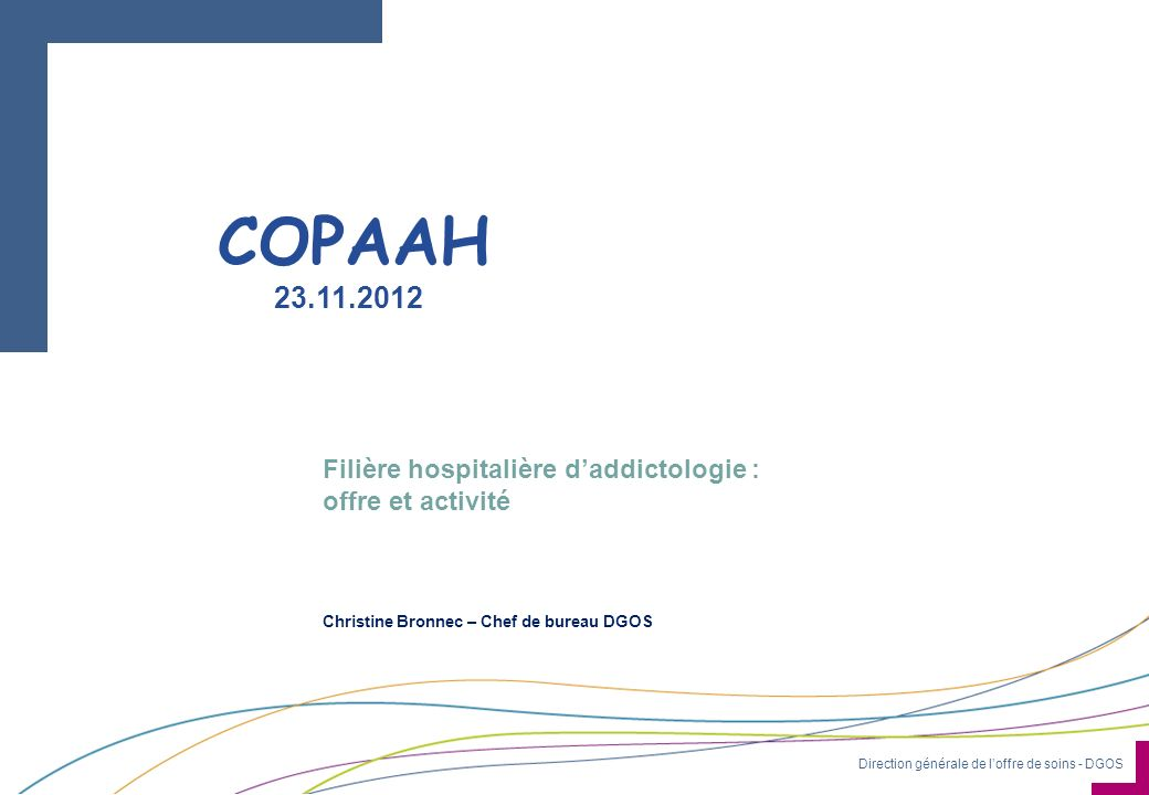 COPAAH 23.11.2012 Filière hospitalière d'addictologie :
