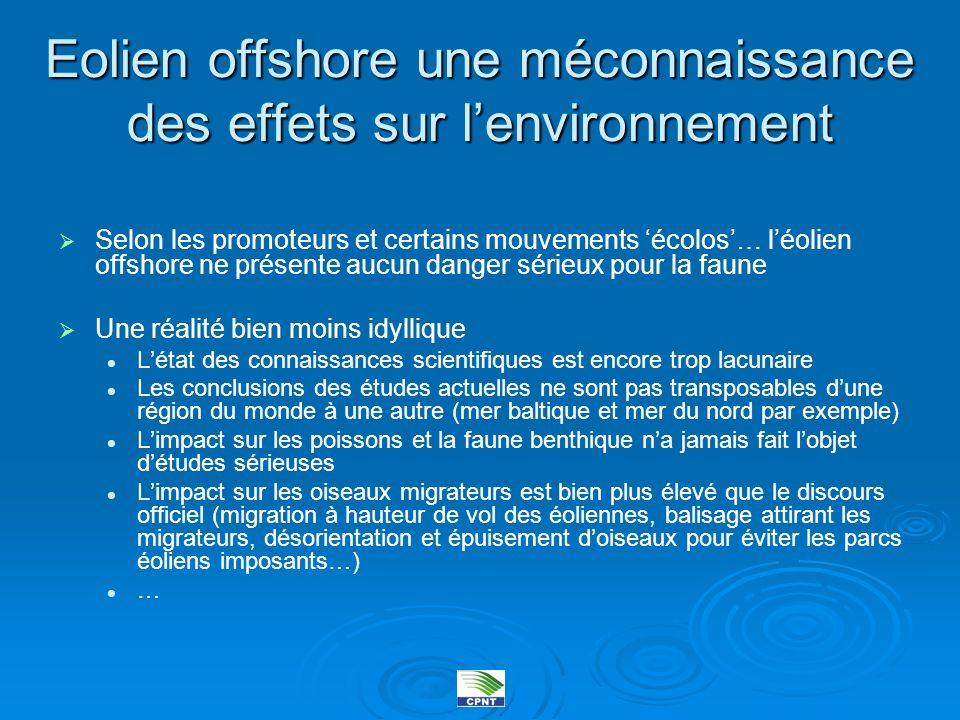 Eolien offshore une méconnaissance des effets sur l'environnement