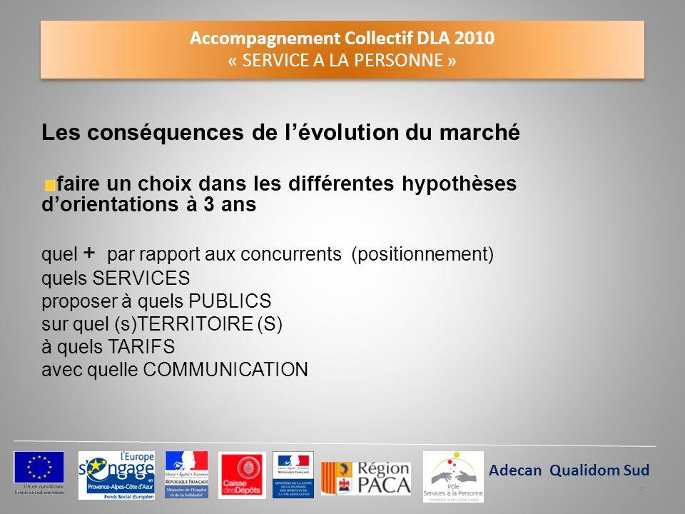 Accompagnement Collectif DLA 2010 « SERVICE A LA PERSONNE »