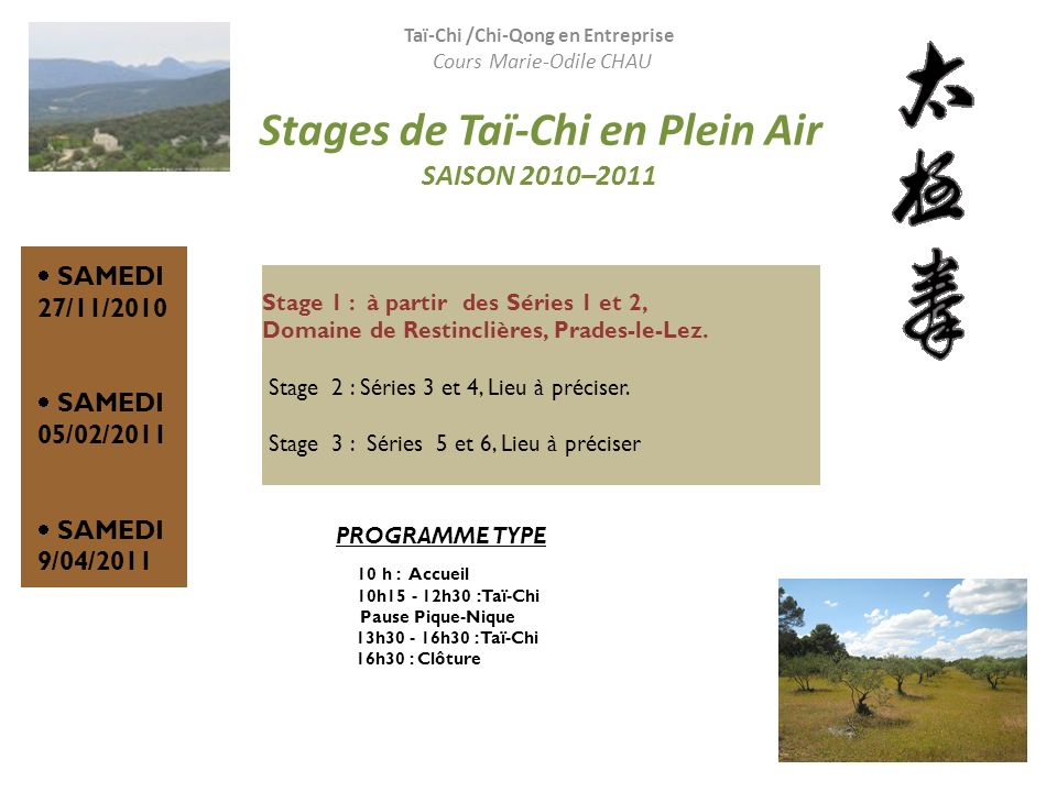 Stages de Taï-Chi en Plein Air