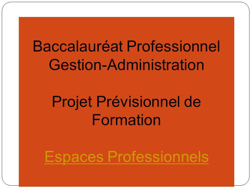 Baccalauréat Professionnel Gestion-Administration