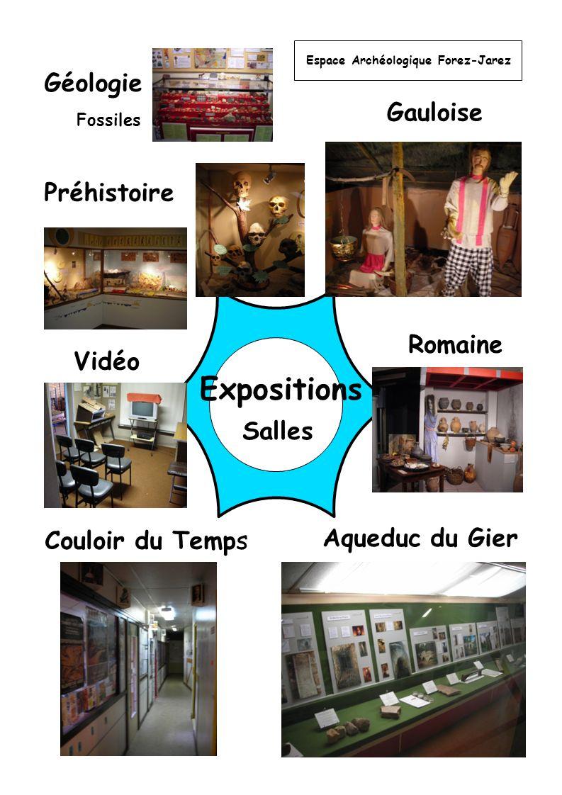 Expositions Géologie Gauloise Préhistoire Romaine Vidéo Salles