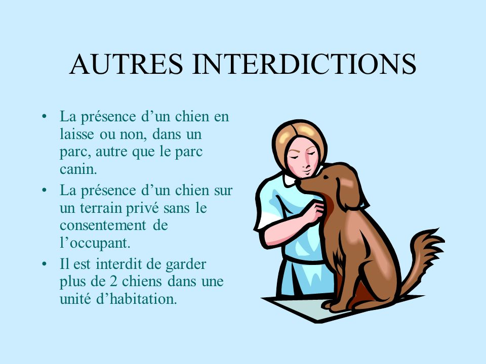 AUTRES INTERDICTIONSLa présence d'un chien en laisse ou non, dans un parc, autre que le parc canin.