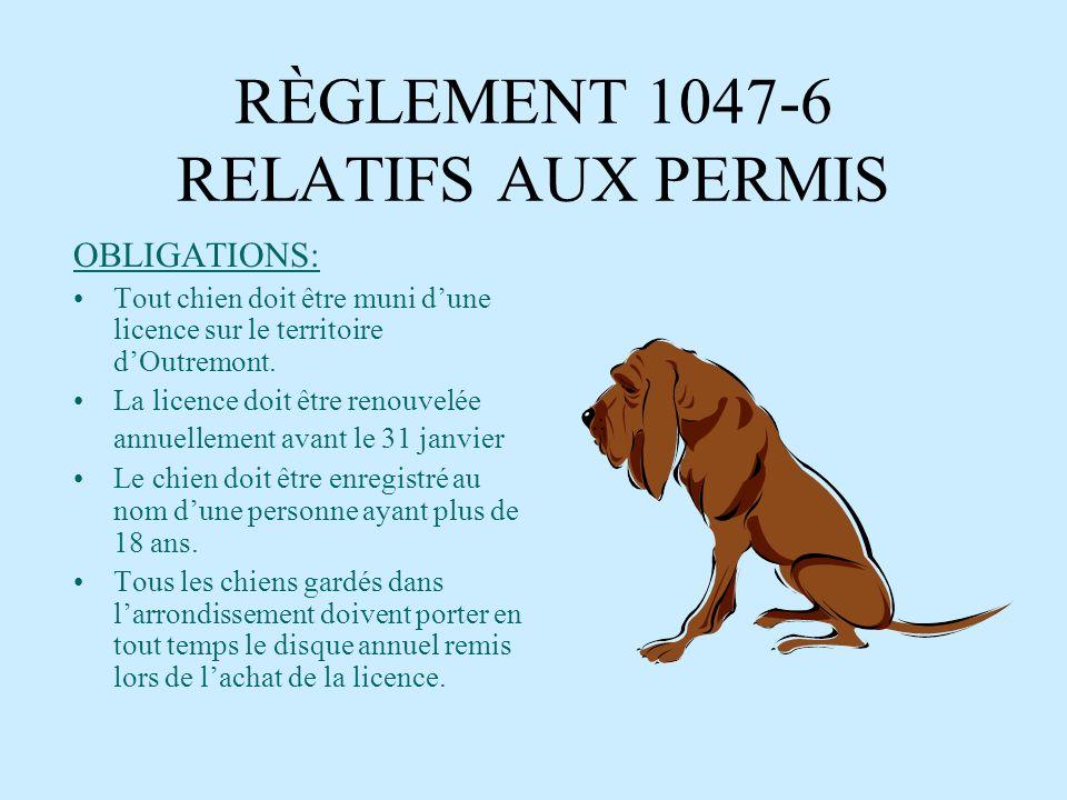 RÈGLEMENT 1047-6 RELATIFS AUX PERMIS