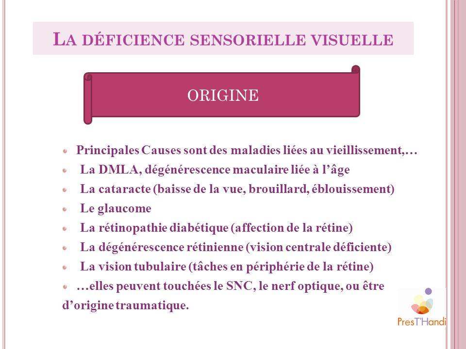 La déficience sensorielle visuelle