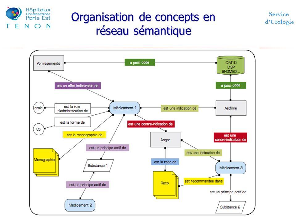 Organisation de concepts en réseau sémantique