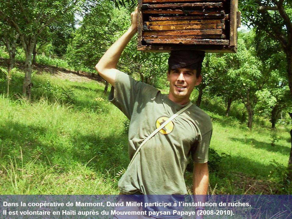 Dans la coopérative de Marmont, David Millet participe à l'installation de ruches.