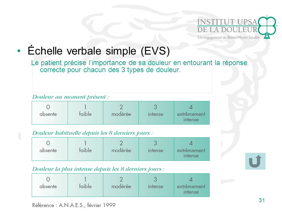 Échelle verbale simple (EVS)
