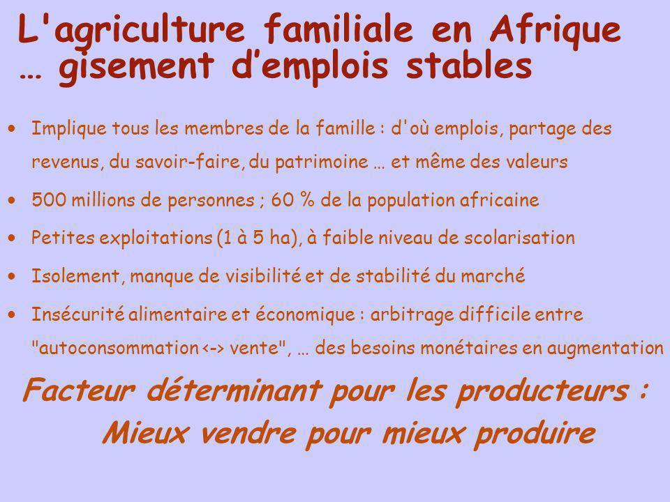 L agriculture familiale en Afrique … gisement d'emplois stables