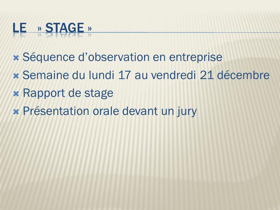 Le » stage » Séquence d'observation en entreprise