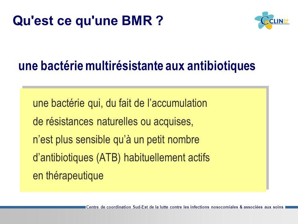 une bactérie multirésistante aux antibiotiques