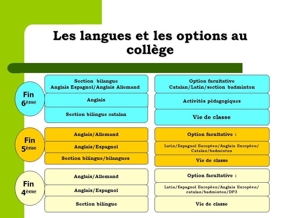 Les langues et les options au collège
