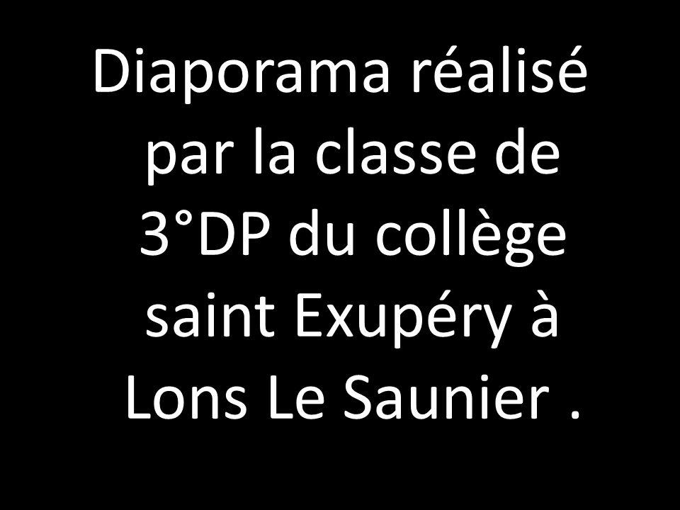 Diaporama réalisé par la classe de 3°DP du collège saint Exupéry à Lons Le Saunier .