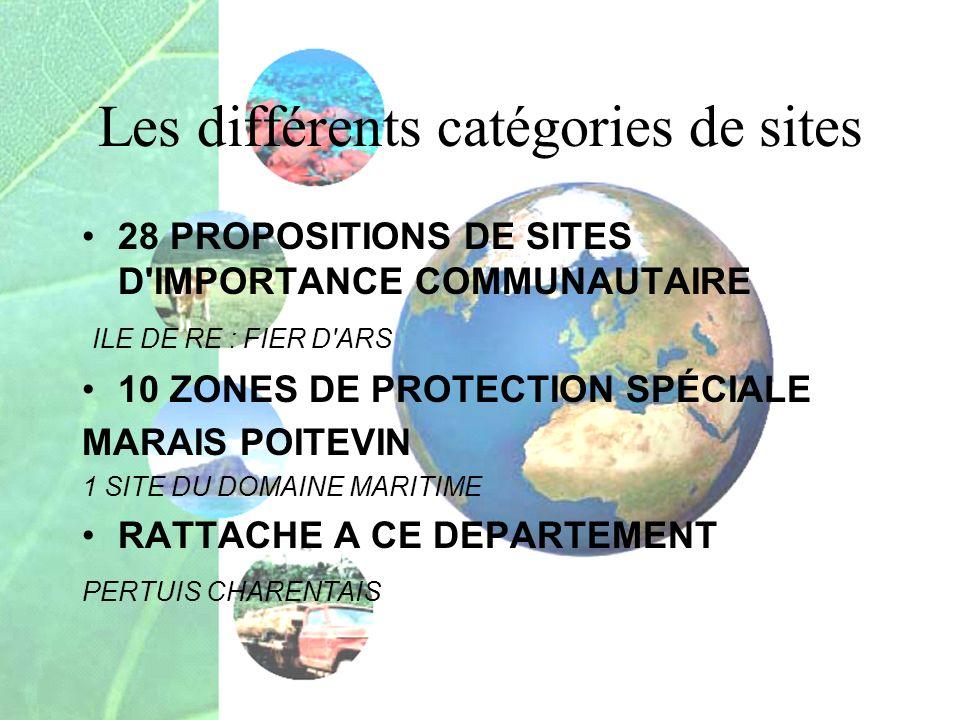 Les différents catégories de sites