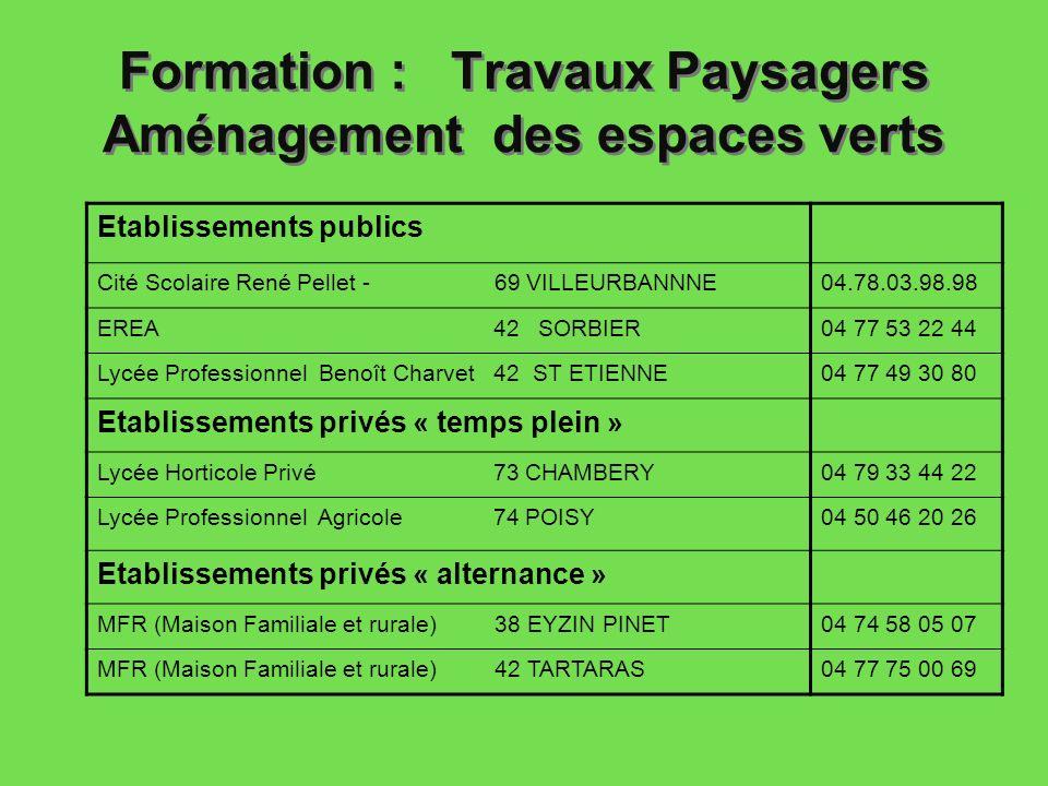 Formation : Travaux Paysagers Aménagement des espaces verts