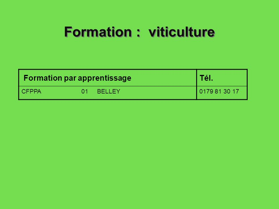 Formation : viticulture
