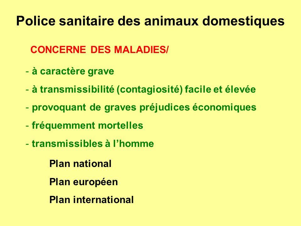 Police sanitaire des animaux domestiques