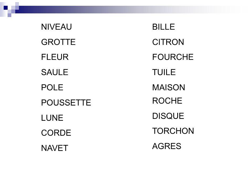 NIVEAU GROTTE. FLEUR. SAULE. POLE. BILLE CITRON FOURCHE TUILE. MAISON. ROCHE DISQUE TORCHON AGRES.