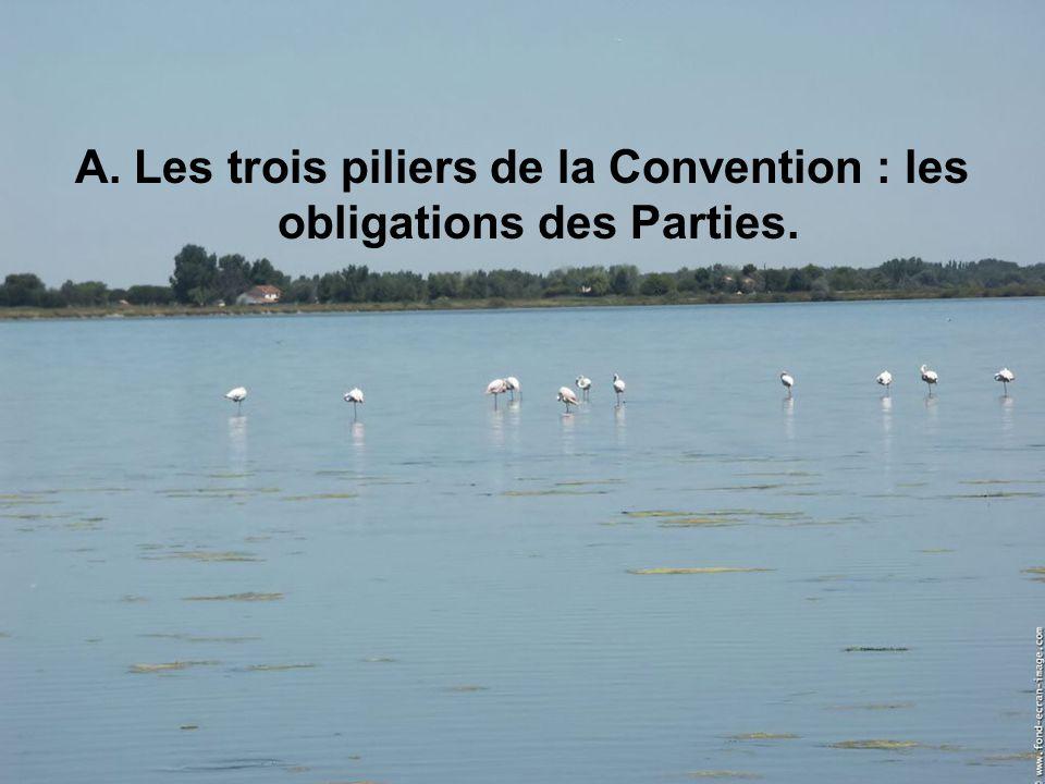A. Les trois piliers de la Convention : les obligations des Parties.