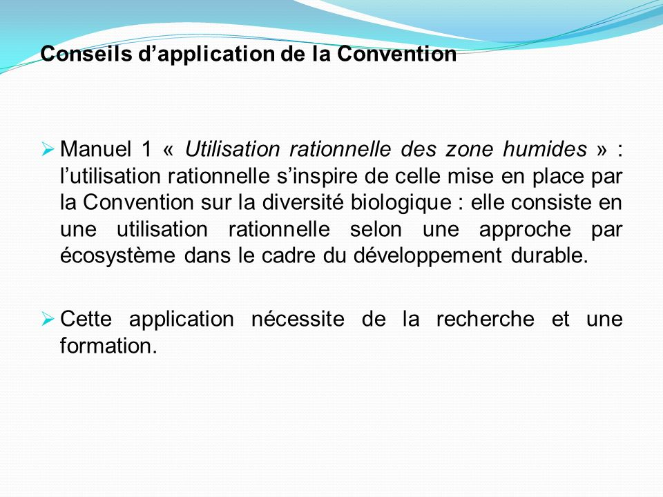 Conseils d'application de la Convention