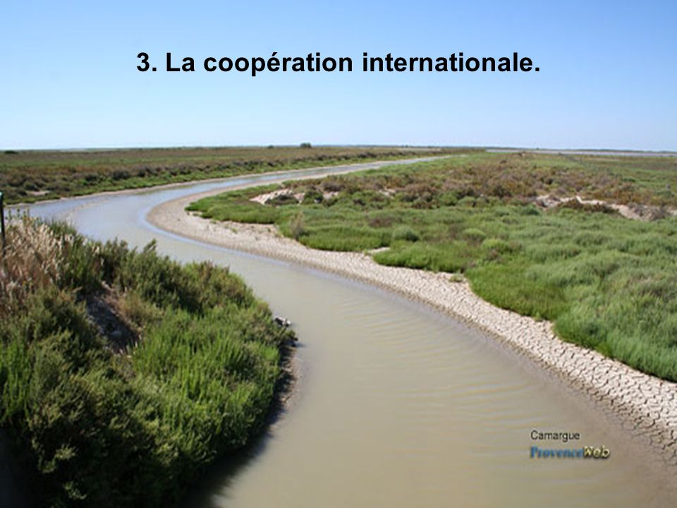 3. La coopération internationale.
