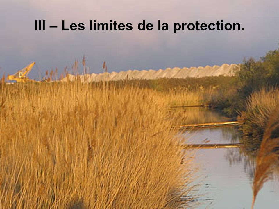 III – Les limites de la protection.