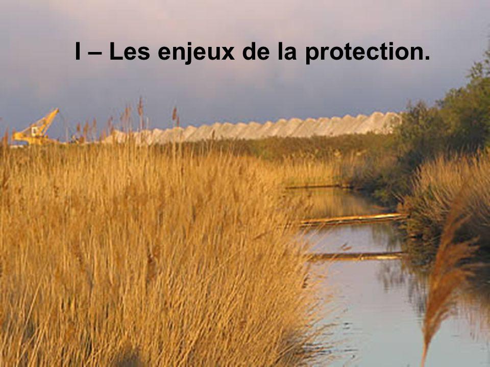 I – Les enjeux de la protection.