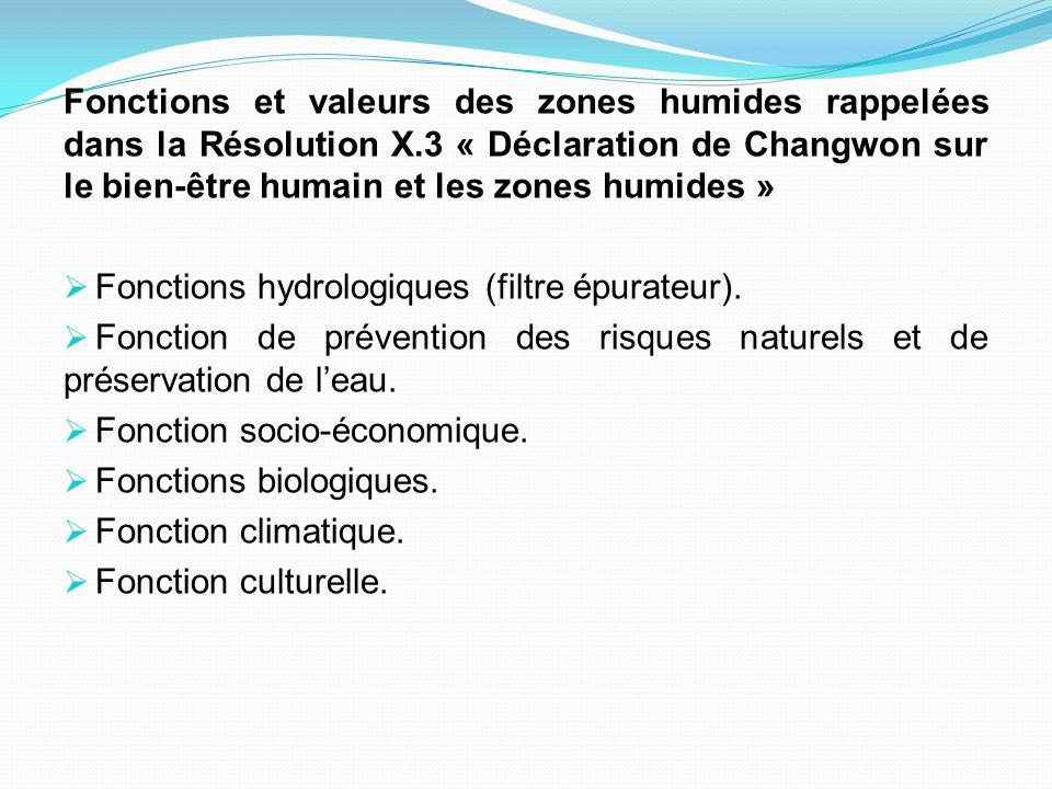 Fonctions et valeurs des zones humides rappelées dans la Résolution X