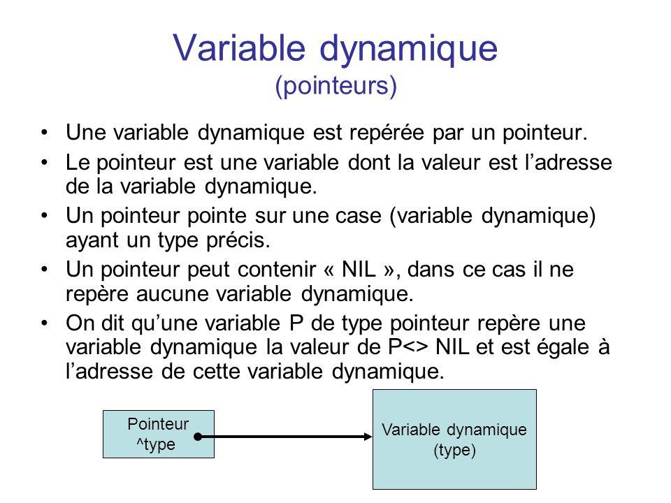 Variable dynamique (pointeurs)